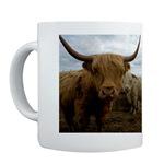 Coffee Mugs!
