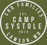 Camp Systole