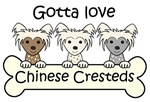 Three Chinese Crested Dogs (Breed Color Varieties)