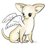 Tumbles Chihuahua Angel