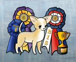 Top Winning Chihuahua