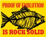 Proof of Evolution is Rock Solid