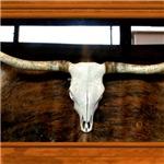 Longhorn #1