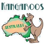 Cute Kangaroo Designs