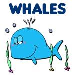 Cute & Cool Whale Designs