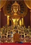 Giant Golden Budha Shrine