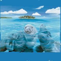 Manatee Party - Island Ocean Sea Wildlife Artwork