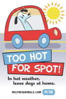 Too Hot for Spot