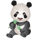 Panda Bear T-Shirts and Gifts!
