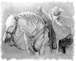 Palomino and Cowboy