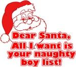 Naughty Boy List
