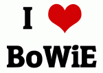 I Love BoWiE