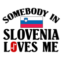 Somebody In Slovenia T-shirt