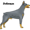 Doberman T-shirts, Doberman T-shirt