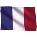 Wavy France Flag
