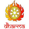 dharma t-shirt & gift