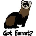 Got Ferret?