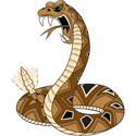 Snake T-shirt, Snake T-shirts, Snake Gifts