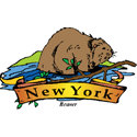 New York + Beaver
