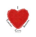 I (heart) Turkish  Angora Cats