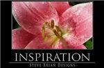 INSPIRATION7