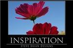 INSPIRATION19