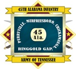 45th Alabama Infantry