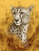 Cheetah Portrait by Marc Brinkerhoff