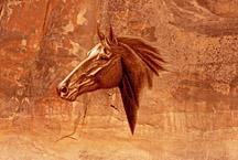 'Sedona Stallion' by Marc Brinkerhoff