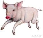 Pig by Marc Brinkerhoff