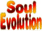 Soul Evolution Design