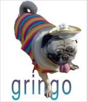 Gringo Pug
