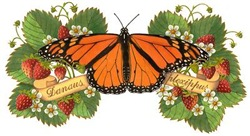 EVERYTHING Monarch Butterfly with Strawberries