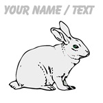 Custom White Bunny