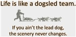 Life is like a dogsled team