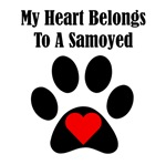 My Heart Belongs To A Samoyed