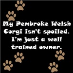 Well Trained Pembroke Welsh Corgi Owner