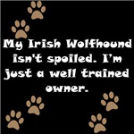 Well Trained Irish Wolfhound Owner
