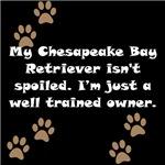 Well Trained Chesapeake Bay Retriever Owner