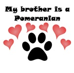 My Brother Is A Pomeranian