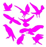 Pink Eagles Silhouette