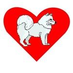 Samoyed Heart