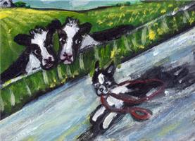 BOSTON TERRIER run Design