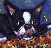 BOSTON TERRIER Bee design