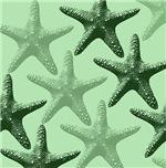 Mint Starfish