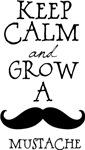 Mustache Fun