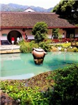 Tea Garden, Photo / Digital Painting