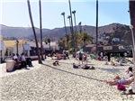 A Taste Of Catalina Island, Photo / Digital Painti