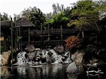 Bridge Over Falls, Photo / Digital Painting