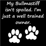 Well Trained Bullmastiff Owner